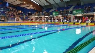 Pływanie zawody miejskie